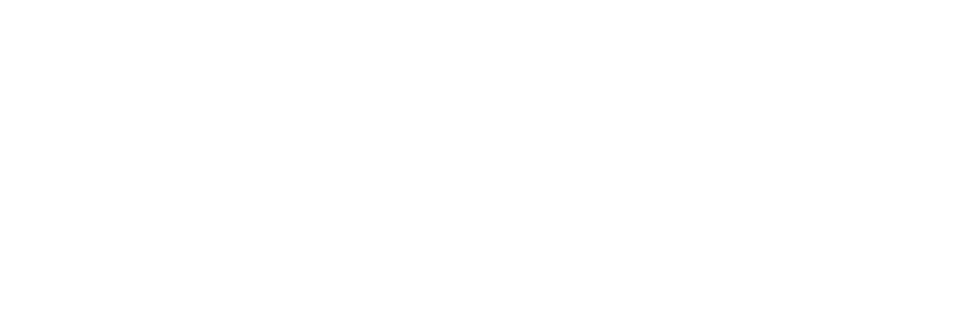 BizDigital Store
